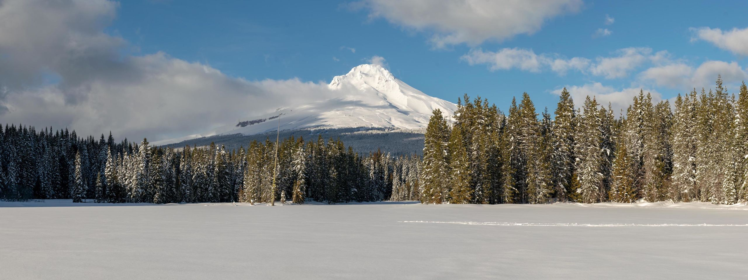 Wide angle panorama of snow covered mount hood taken from the center of lake Trillium.