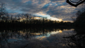 soft yellow and blue clouds are reflected upon the lake at Springfield Nature Center in Springfield, Missouri