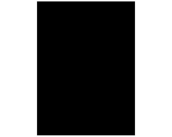 petrofunders logo black