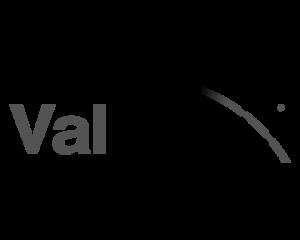 valmedx logo black